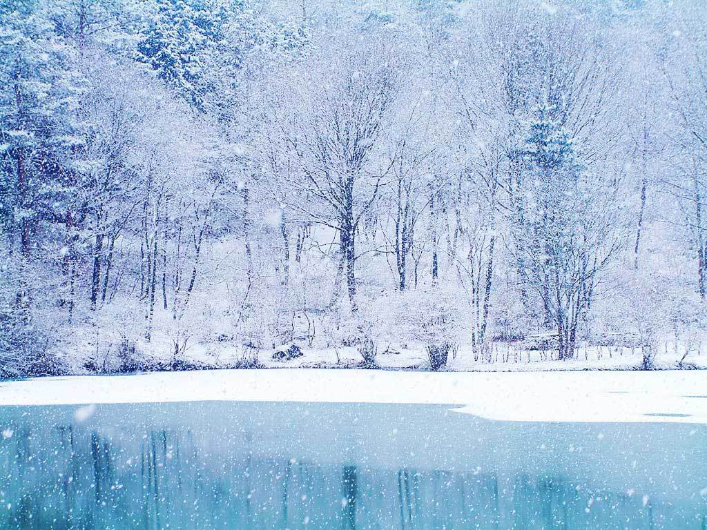 Reflection for February 1st, 2015 by Ewelina Frackowiak