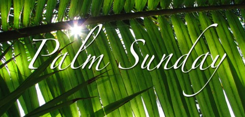 Reflection for March 29th, 2015 by Donna Rietschlin