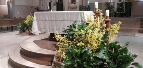 Fr. Jim's Easter Sunday video message, a sung prayer and resources for parishioners