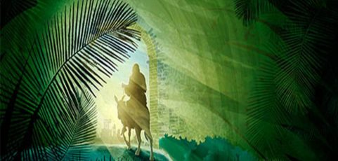 A video homily by Father Jim and the Liturgy of the Word for Palm Sunday