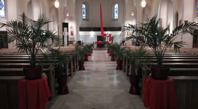 Fr. Jim's Reflection, Liturgical Resources and a Parish Update on Palm Sunday